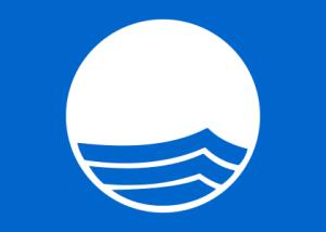 420px-Blue_Flag_Logo.svg